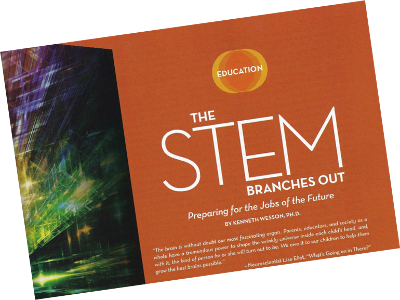 The Stem Branches Out